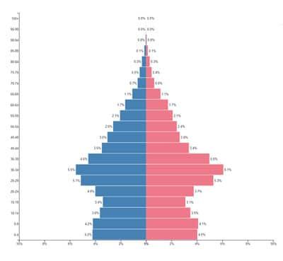 حفظ منابع انسانی-age pyramid
